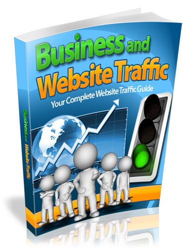 Website Traffic For Business